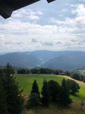 20190830 TVG Turnfahrt Freiburg 00022.jp