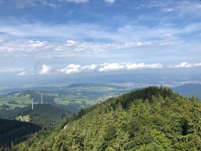 20190830 TVG Turnfahrt Freiburg 00023.jp