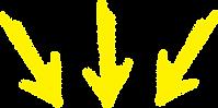 fleches-jaune.png