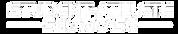 white sas logo.png
