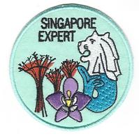 SG expert final.png