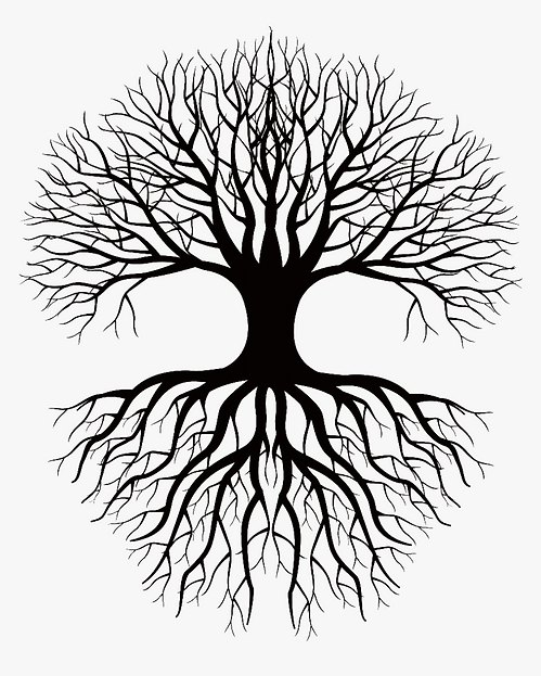 16-169956_coloring-book-drawing-root-tree-clip-art-tree.png