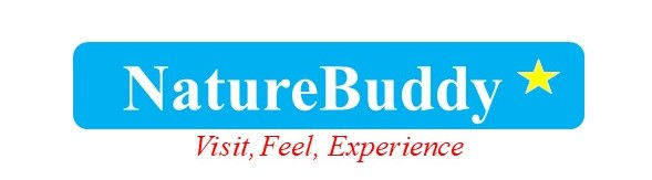 NatureBuddy_LOGO_20190305-2.jpg