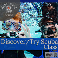 Discover Try Scuba.jpg