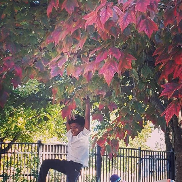 Swingin' into Fall like...