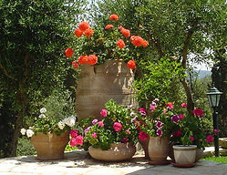 Corfu Greece property
