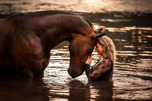 paardenfotograaf paardenfotografie