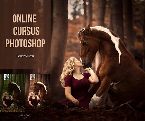 online cursus photoshop-9.png