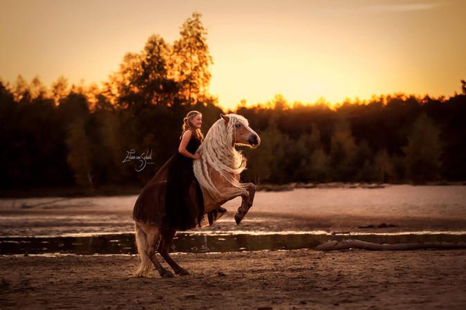 romantische paardenfotografie fotograaf.