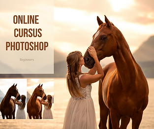 online cursus photoshop-8.png
