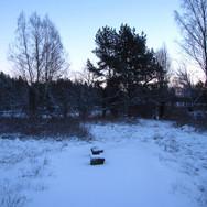 Joulunaikaa, Risto Tarvainen