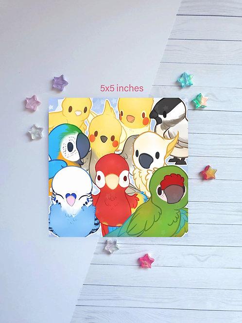 Birds Square Print