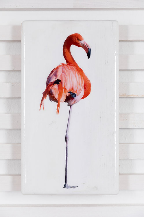 #flamingo-R-28x42