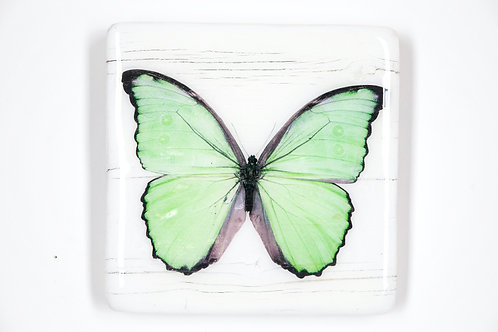 butterfly, Schmetterling grün, Epoxi Surface, woodentiles.de