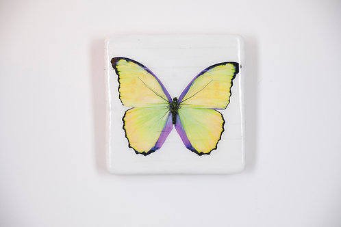 butterfly, Schmetterling gelb, Epoxi Surface, woodentiles.de