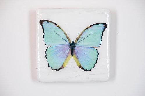 butterfly, Schmetterling cyan, Epoxi Surface, woodentiles.de