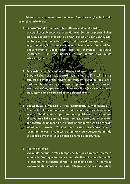 INFORMATIVO Iridologia_page-0003.jpg