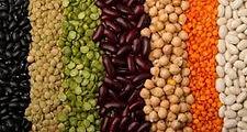 soja-grão-de-bico-leguminosas.jpg