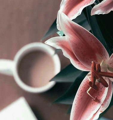bloomons.com.jpg