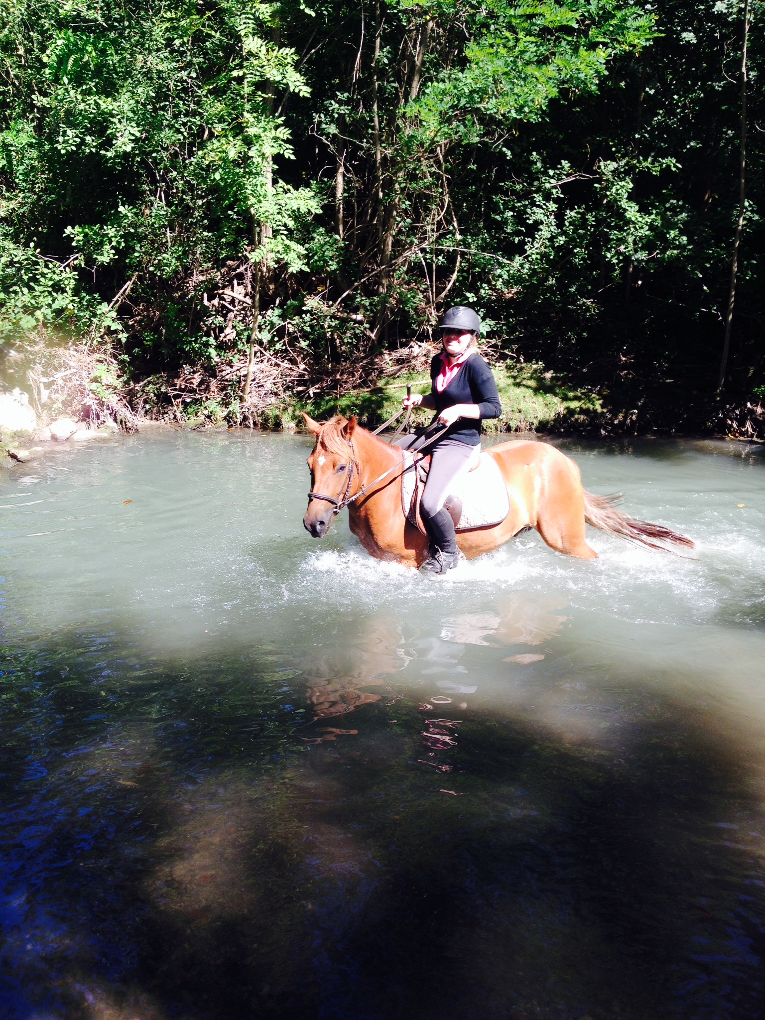 Equitation de pleine nature