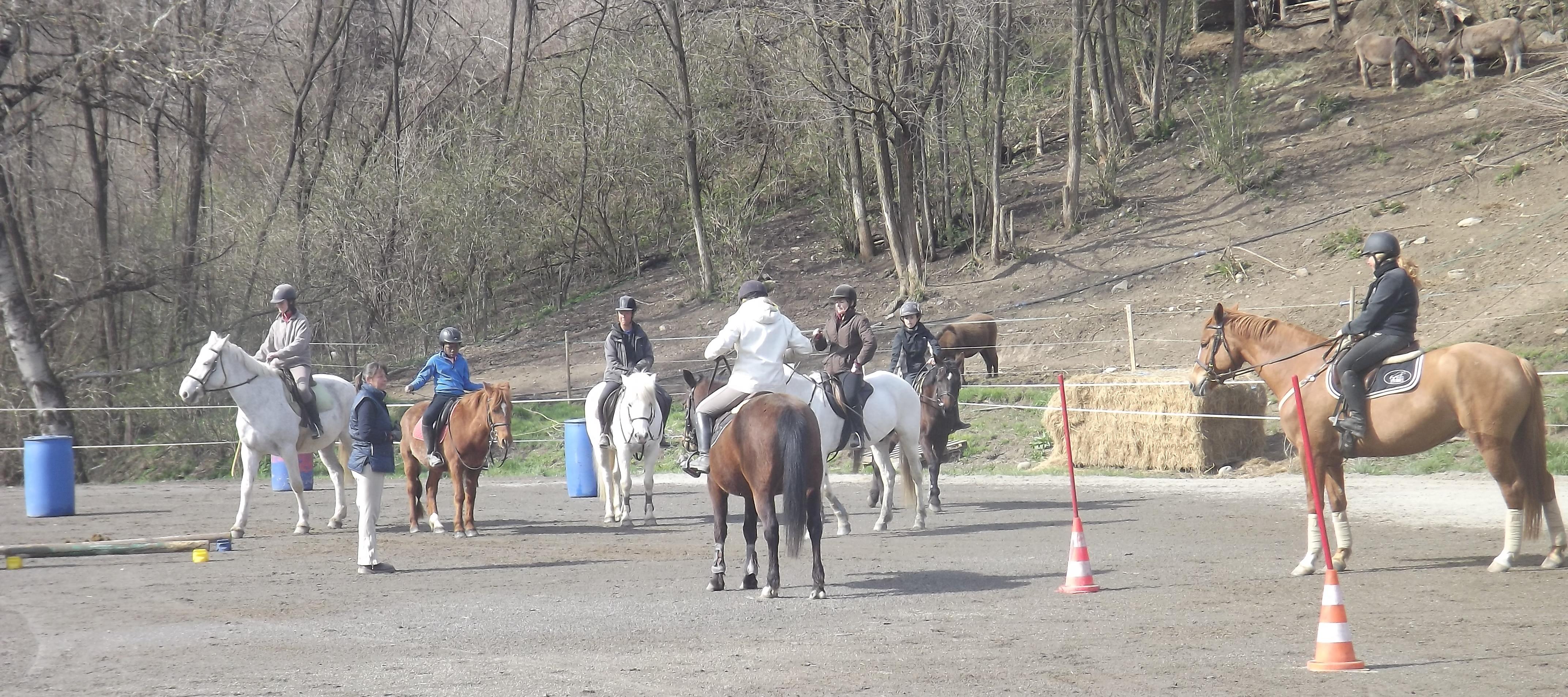 Equitation de travail