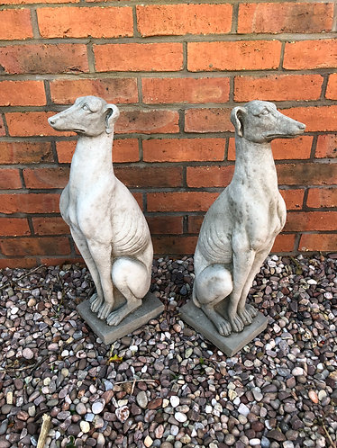 Small Standing Greyhounds