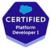 platform developer i.PNG