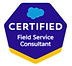 field service consultant.PNG
