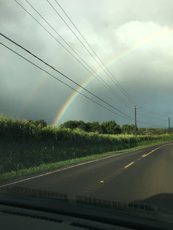 Land of Rainbows
