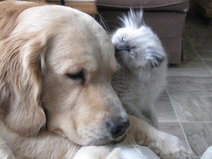 George and Olivia.JPG