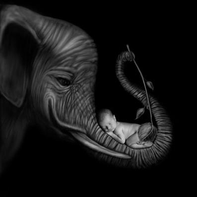 slonik.jpg
