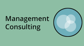 page.management.consulting.png