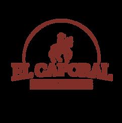 Social ElCap - Logo - Brick@2x.png