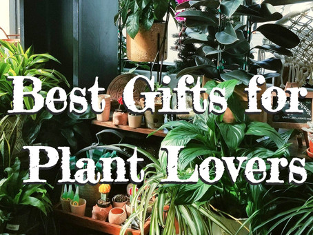 "Best Unique (and Useful!) Gift Ideas for Plant Lovers || ""No More Plants"""
