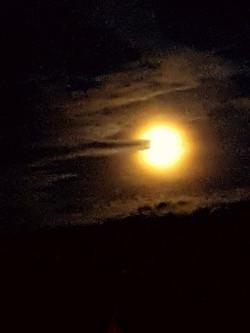 2016 The Sun or the Moon?