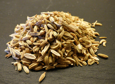 How Great Is Fennel? - Ayurveda - Canberra Doula  & Postpartum Meals