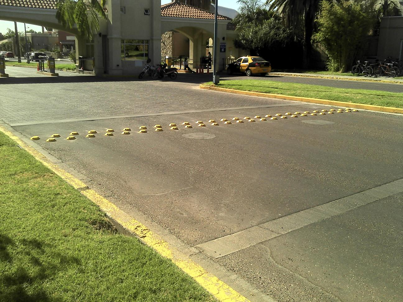 Barrio Palmares: reductor de velocidad de 3 lineas