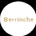 logos-berrinche.png
