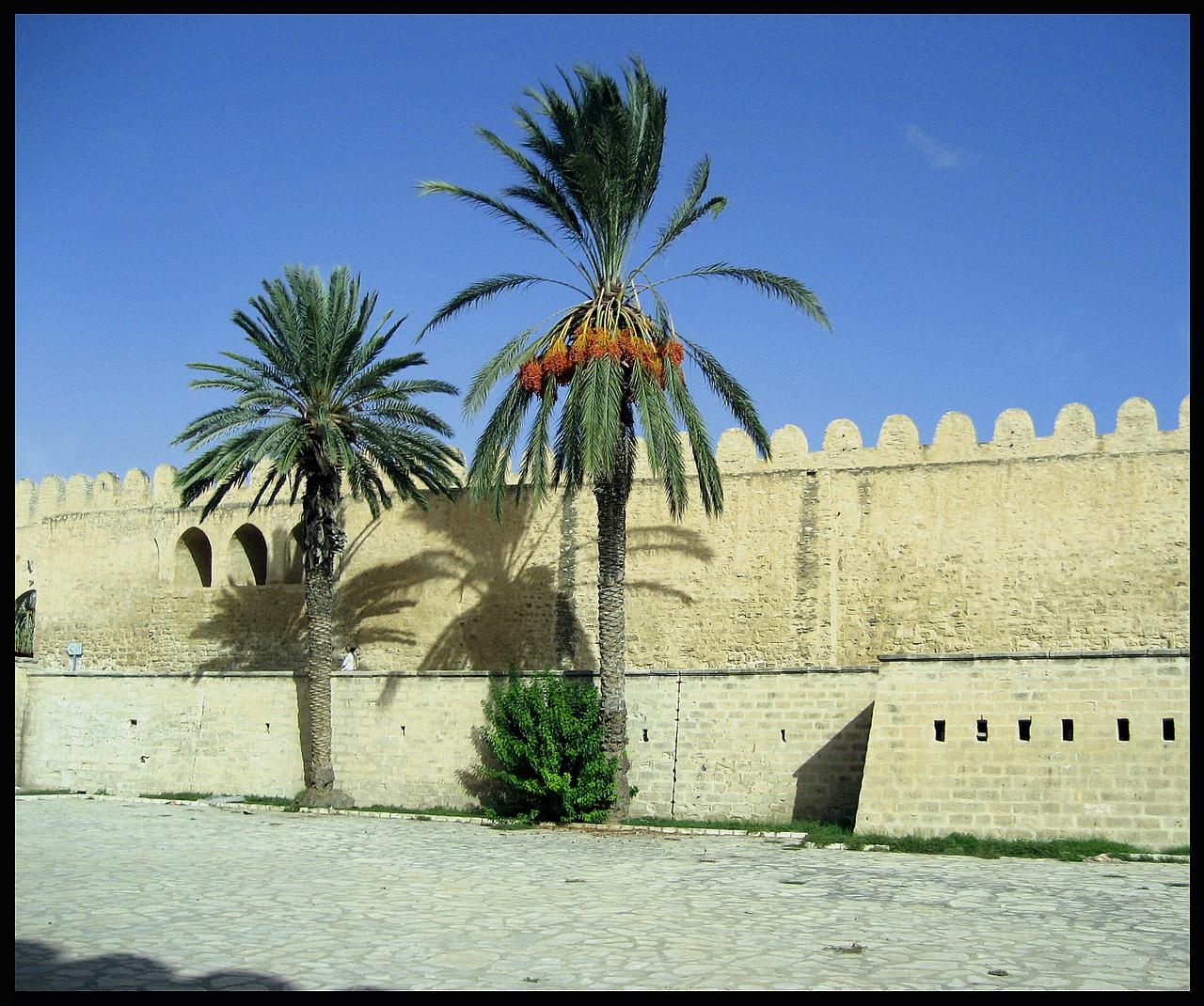 Medina Walls