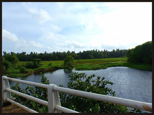 Near Puttalam