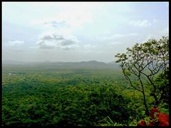 View from the Top Sigiriya Rock