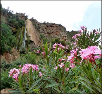 1st & 2nd Day: Tajine & a Waterfall