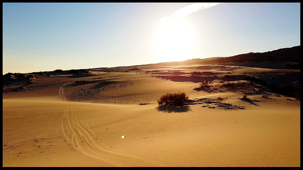 Dunes of Valdevaqueros
