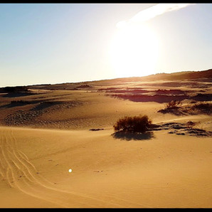 Desert: Useful stuff
