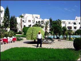 Preview: Tunisia-Monastir, Skanes