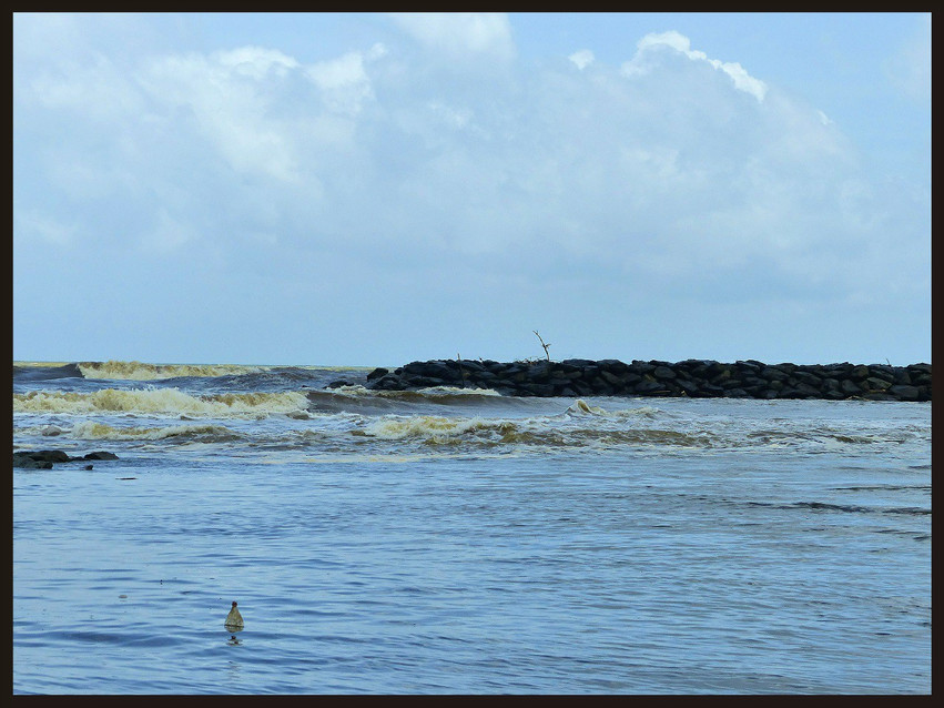 Indian ocean & Gin oya River