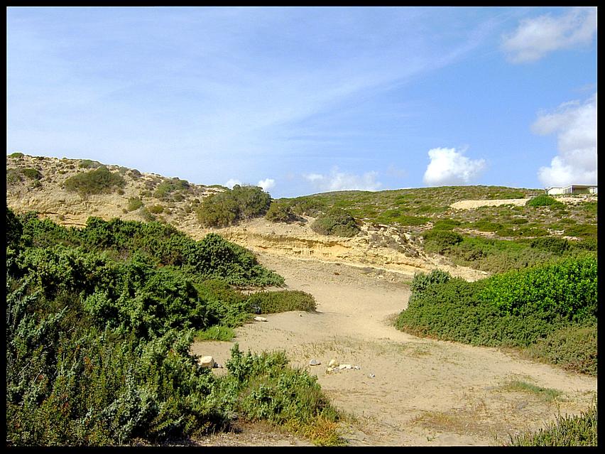 Way to the Sanddunes
