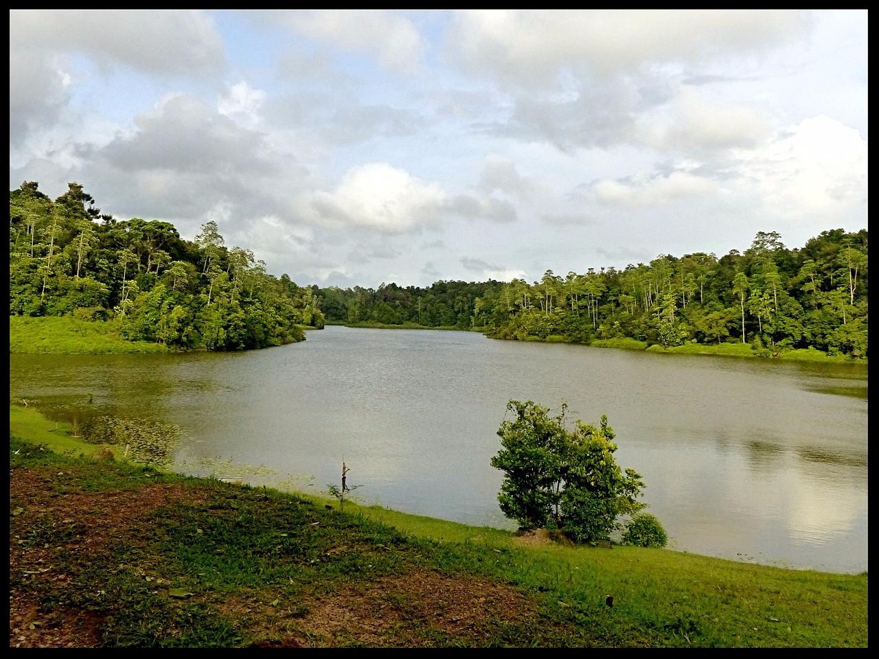Biodiversity, Lake
