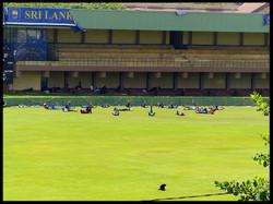 Cricket Nationalteam