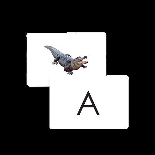 Alphabet Sound Cards - Upper  Case